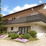Hotel Pictures: Apartment Herrischried - Unter den Tannen 2, Niedergebisbach