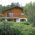 Hotel Pictures: Holiday home Le Vignoble Ovronnaz, Ovronnaz