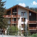 Hotel Pictures: Mont-Tana, Crans-Montana