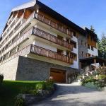 Hotel Pictures: Mont du Val, Villars-sur-Ollon