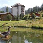 Hotel Pictures: Mont Fort 11, Siviez