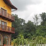 Vila Allegra Guesthouse,  Baile Felix