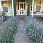 Hotelfoto's: La Maison St Arnaud, Rutherglen