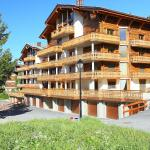 Hotel Pictures: Cimes-Blanches A 101, Nendaz