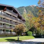 Фотографии отеля: Apartment Fewo Erlinghagen Top Bad Hofgastein, Бад Хофгаштайн