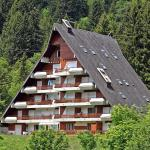 Hotel Pictures: Anémone, Gryon