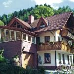 Hotel Pictures: Apartment Black Forest, Oberharmersbach