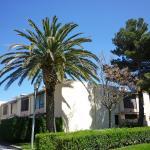 Hotel Pictures: Apartment Hameau Du Soleil Argeles sur Mer, Plage d'Argelès
