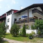 Apartment Almblume.1,  Steibis