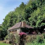 Hotel Pictures: Le Moulin de Segere, Mauvières
