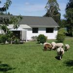 Broekhaven Country Cottage,  Rotorua