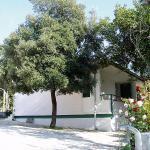 Punta Skala-1, Petrcane