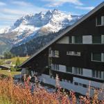 Hotel Pictures: Les Cimes 1, Les Crosets