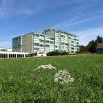 Hotel Pictures: Apartment Löffingen 11, Dittishausen