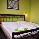 Hotel Pictures: Hotel Hvězda, Kroměříž