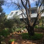 The Garden House,  Fremantle