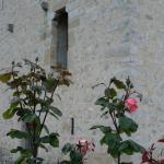 Hotel Pictures: Albergue Cantoblanco, Barrón