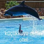 Delfin Hotel Restaurant,  Kucukkuyu