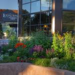 The Lexington at Jackson Hole, Jackson