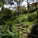 Ecohotel La Casona, Pereira