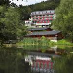 Hotel Pictures: Waldhaus am See, Willingen