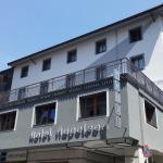 Hotel Napoleon Susa, Susa