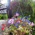 Lodge House B&B,  Buckland St Mary