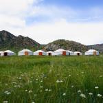 My Mongolia Eco Ger Camp, Nalayh