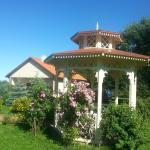 Hotel Pictures: Villa Laura, Toila