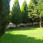 Garden of Eden, PalaiónTsiflíkion