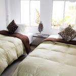 Hotel Pictures: Premium House, Floridablanca