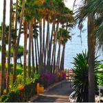 Apartamento Playa Algaida,  Sitio de Calahonda