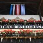 Foto Hotel: Locus Malontina Hotel, Gmünd in Kärnten