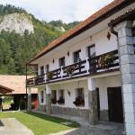 Guest House Piatra Craiului, Bran