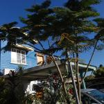 Happytourcairns sharehouse, Cairns