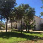 Apartmani Liveric, Vir