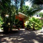 Green Dream Home, Nkoanrua