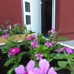 Hotellikuvia: Ciklon Apartment, Banja Luka