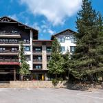 Hotel Pictures: Lion Hotel Borovets, Borovets