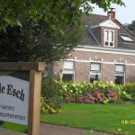 An de Esch,  Dwingeloo