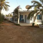 Djerba midoun,  Midoun