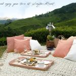 Singtom Tea Estate & Resort, Darjeeling