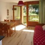 Hotel Pictures: Rental Apartment Les Myosotis, Les Orres