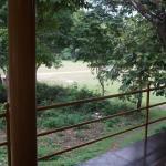 Periyar Jungle Inn, Thekkady