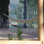 Podere Serraquerciolino, Monterotondo