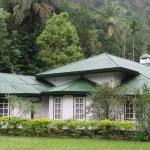 Herondale Estate Bungalow, Nawalapitiya
