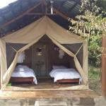 Mara Elephant Springs-Tented Camp, Ololaimutiek