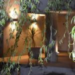 Hotellbilder: Complejo Los Sauces, Tandil