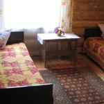 Hotel Pictures: Agrousadba Pochta Ababya, Druysk
