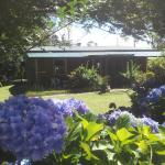 Hotellikuvia: Riverstone Cottage, Springbrook